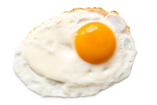 Single fried egg.