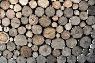 Fototapeten Brennholz-textur pile of wood