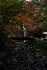 秋・紅葉と箕面の滝