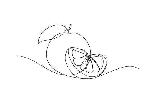 Orange fruit whole and a slice in continuous line art drawing style. Black line sketch on white background. Vector illustration
