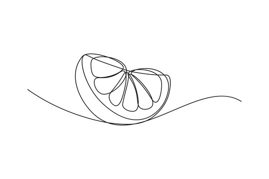 Orange fruit slice in continuous line art drawing style. Black line sketch on white background. Vector illustration