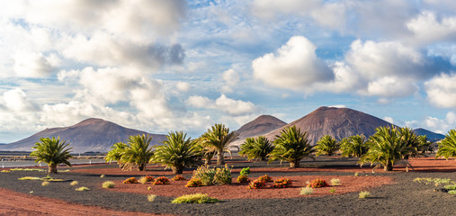 Wall Mural - Landscape with volcanoes mountain in Timanfaya national park, Lanzarote, Spain
