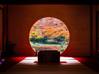 Foto auf Gartenposter Violett rot 鎌倉 明月院