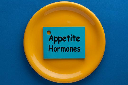 Appetite Hormones Concept