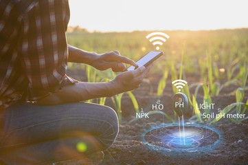 IoT(Internet of Things)smart agriculture industry 4.0,5.0 concept.farmer working in farm To collect data to study and develop his farm to improved productivity in the future.