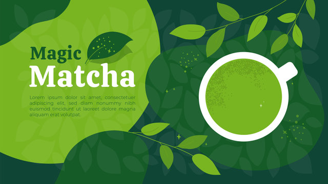 Vector illustration of magic cup of green tea matcha. Japanese drink made from powder. Background of healthy organic beverage and branches of tea plant. Template for banner, menu, layout, flyer, web.