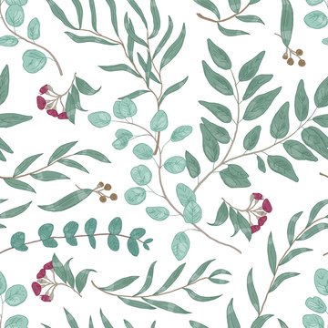 Eucalyptus branches hand drawn vector seamless pattern
