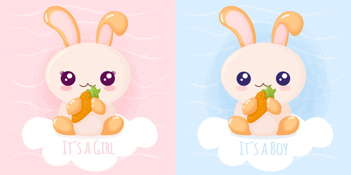 Cute rabbit it´s a girl it´s a boy