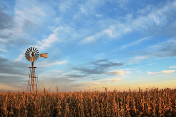 Photo sur cadre textile Texas Texas style westernmill windmill at sunset, with a golden colored grain field in the foreground, Argentina