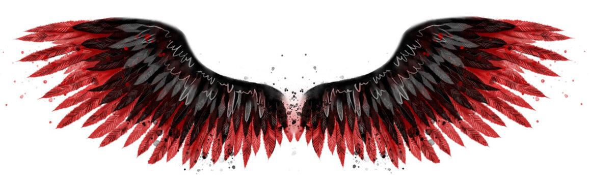 Beautiful black red watercolor wings