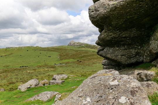 Dartmoor National Park from Haytor in Devon, England, UK