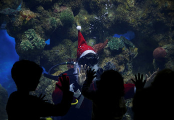 A diver dressed as Santa Claus waves to children from inside a fish tank at the Malta National Aquarium in Qawra