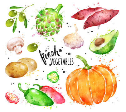 Watercolor collection of fresh vegetables