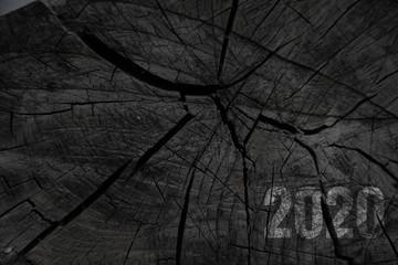 Fototapeta 2020 logo for new year celabration