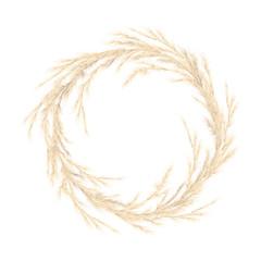 Pampas grass golden wreath. Vector illustration. panicle Cortaderia selloana South America. festive decoration template.
