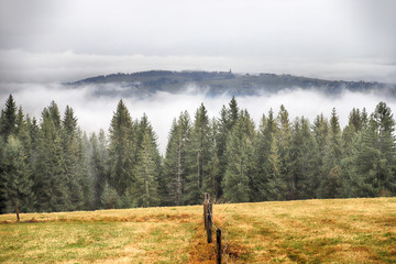 Foto auf Acrylglas Khaki Tatra National Park in stormy weather. Panorama of Polish Tatra Mountains early morning, on a foggy and rainy day, Zakopane, Poland, Europe.