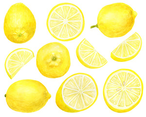 Watercolor fresh lemon set. Hand drawn botanical illustration of yellow citrus fruits isolated on white background. Clipart objects for design and decoration, package, cards
