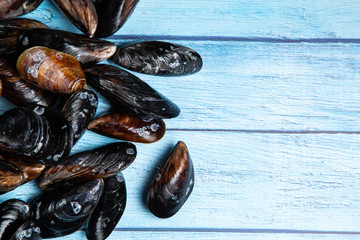 Fresh raw mussels on blue wooden backgound