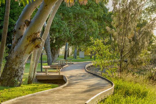 A boardwalk in a lush coastanl area in Queensland, Australia.