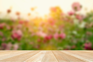 Photo Stands Melon Empty top wooden table on soft blur cosmos flower filed blooming with sunset