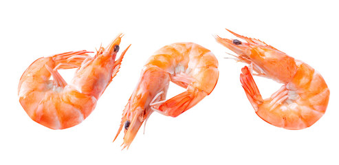 Boiled shrimp isolated on white isolated Collection. shrimp Clipping Path Image stack Full depth of field macro shot