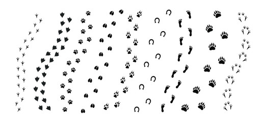 Vector black set bundle of different animals foot print path tracks isolated on white background