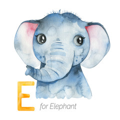 Watercolor Animals Alphabet.Learn letters with funny animals. Cute Elephant for E letter.  Perfect for education, baby shower, children prints or room decor, template cards, books and much more
