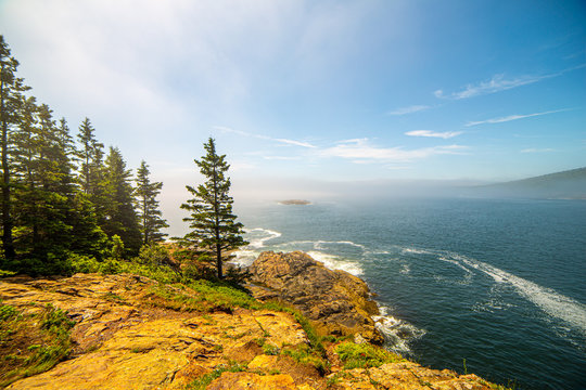 Bright, foggy view along rocky banks in Acadia National Park, Maine