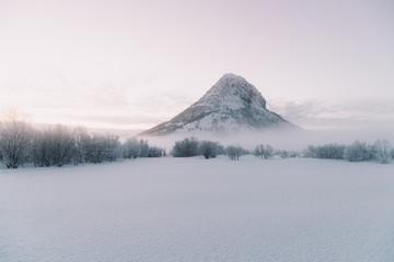Bushes between field in snow and amazing sky Fotobehang