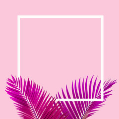 Wall Mural - Natural pink palm leaf with white frame on pastel pink background, nature background