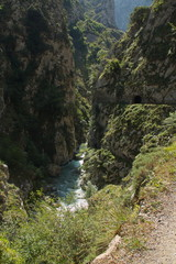 Valley of Rio Cares at hiking track Ruta del Cares from Poncebos to Cain in Picos de Europa in Asturia,Spain,Europe