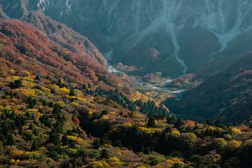 Wall Murals 大山隠岐国立公園の紅葉