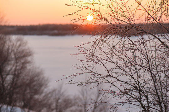 The winter landscape of sun shines through the branches of frozen trees against the surface of the frozen lake. Winter solstice.