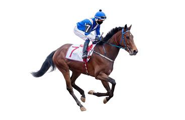horse jockey racing isolated on white background