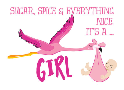 Sugar, Spice and everything nice. It's a girl. - Funny flamingo stork illustration with baby girl. Typography illustration for new born.  Good for posters, greeting cards, textiles, T-shirts.