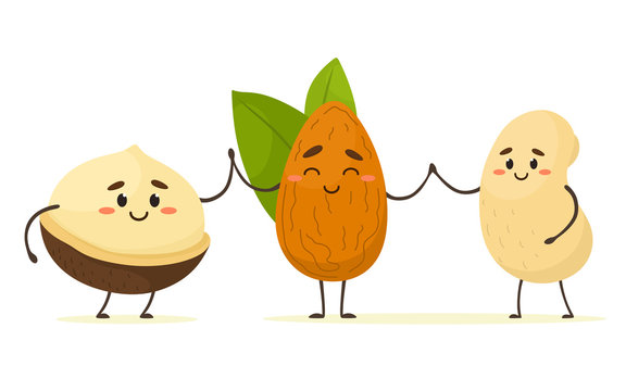 Cute cartoon nuts, macadamia, almonds and cashews hold hands. Best friends. Vector isolate in cartoon flat style.