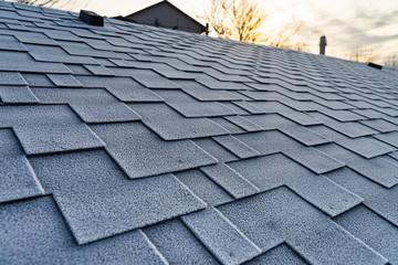 Winter frost on the asphalt roofing shingles.
