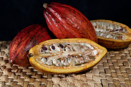 Three cacao units, one showing the fruit pulp.
