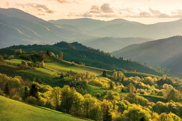 Spoed Fotobehang Honing mountainous countryside at sunset. landscape with grassy rural fields and trees on hills rolling in to the distance in evening light. distant ridge and valley in haze. fantastic scenery in springtime
