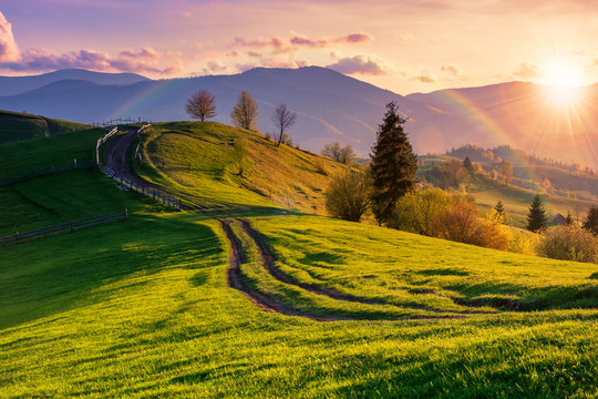 mountainous rural landscape in evening light. wooden fence along the path through rolling hills in fresh green grass. beautiful scenery in springtime. rainbow in sun light