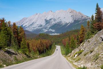 Wall Mural - Jasper National Park, Alberta, Canada