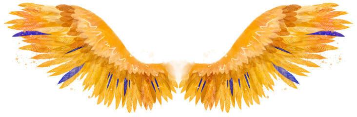 Beautiful yellow orange golden fiery magic phoenix wings with several blue feathers