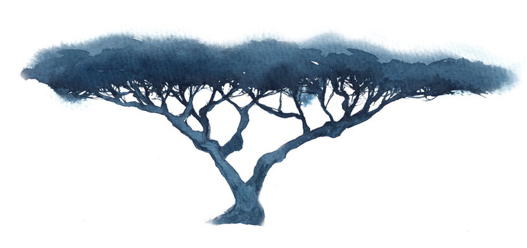 Watercolor illustration of a silhouette of a branchy tree, acacia in blue tones on a white background