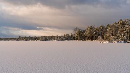 Foto op Canvas Donkergrijs Winter landscape in Kakerdaja raised bog in Estonia. Thin layer of white fresh snow covering poor moorland pines (Pinus sylvestris var. nana), frozen ground and bog pools. Low sun casts orange light.