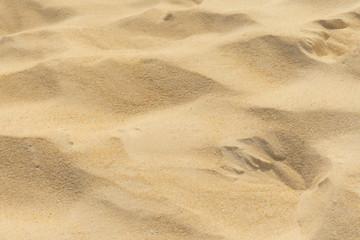 Fototapete - footprints in the sand