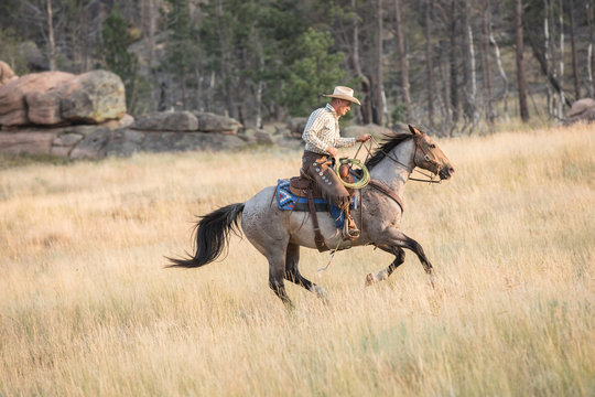 Cowboy and Roan Horse