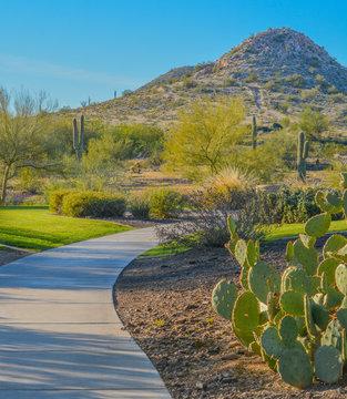Discovery Trail in the Sonora Desert. Peoria, Maricopa County, Arizona USA