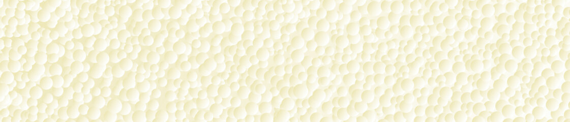 Froth Bubbles Web Banner Background