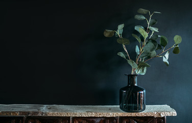 Fototapeta Green tree Branch putted into black glass vase on the natural stone mantel shelf on the black color wall background lit with side window light. Cozy home decor elements concept image. obraz