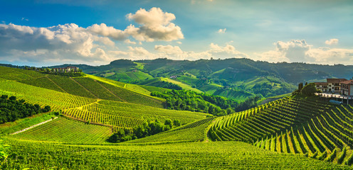 Poster Vineyard Langhe vineyards sunset panorama, Serralunga Alba, Piedmont, Italy Europe.